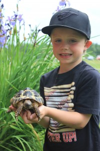 Our Zoo - Boy with Turtle